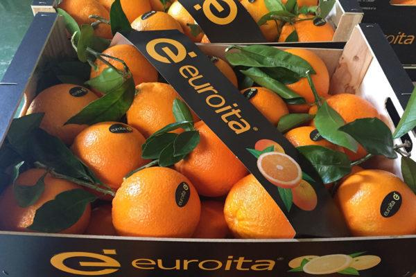 naranjas-euroita